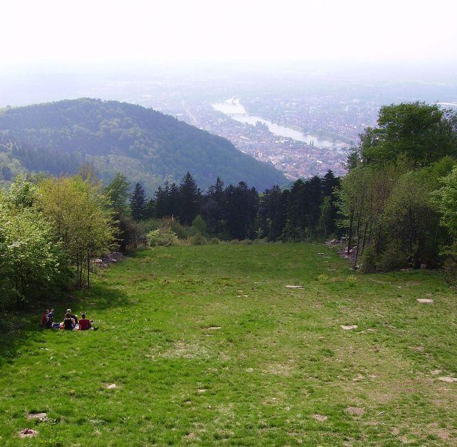 Wiese_Koenigstuhl_Heidelberg